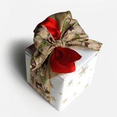 画像1: 【Gift】クリスマスギフトラッピング/有料ラッピング/ギフト/贈り物 (1)