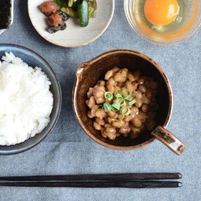 画像1: 【SHIKIKA】まぜ鉢 鉄釉  茶 納豆 卵 ドレッシングボウル ミキシングボウル 美濃焼 陶器 日本製 LOLO ロロ