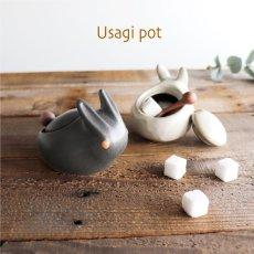 画像1: 【アイ・クラフト】 うさぎポット シュガーポット スプーン付/小物入れ/ウサギ/黒うさぎ 白うさぎ 兎/陶器/日本製 ハンドペイント  (1)