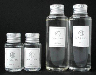画像2: NEW【SALIU】インテリアスティックセット(S)/ブーケ/ディフューザー/陶器/日本製/ロロ